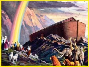 Noah rainbow
